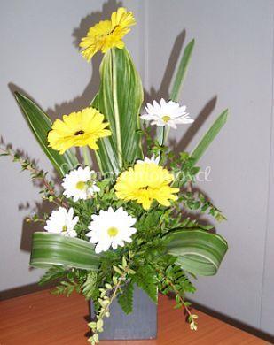 Gerberas con hojas tropicales