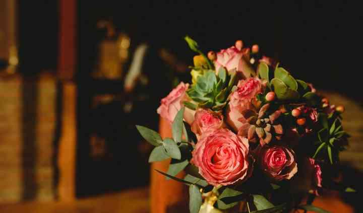 Suculentas y rosas ecuatoriana