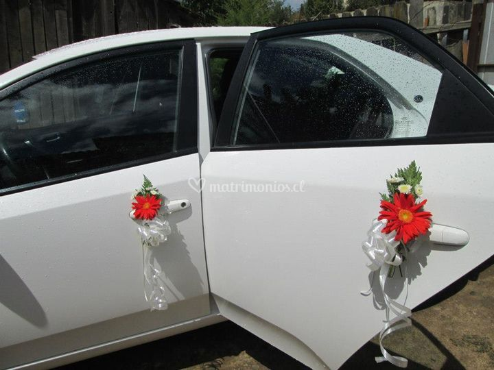 Arriendo autos decorados