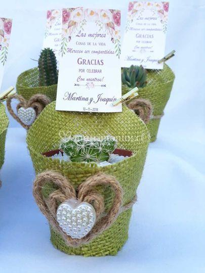 Cactus con arpillera