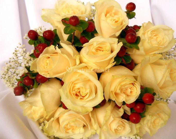 Distintos tipos de flores