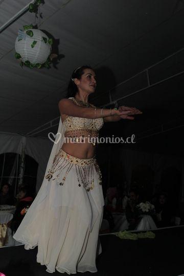 Maria jose procel bailes