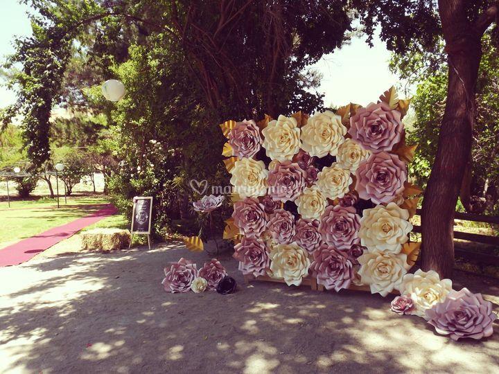 Mural de rosas para fotografía