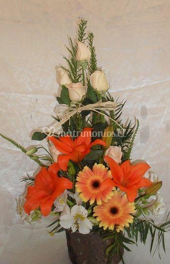 Flores de alta calidad