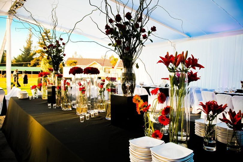 Banquetería Dominga Eventos
