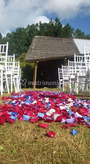 Anfitrión ceremonia