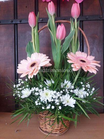 Canasto de tulipanes