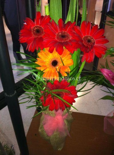 Surtidos de flores
