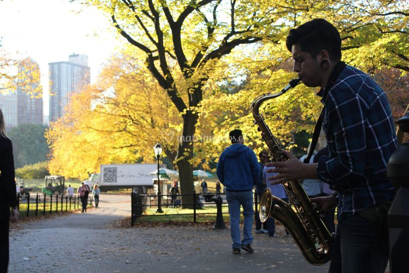 New York , Central Park