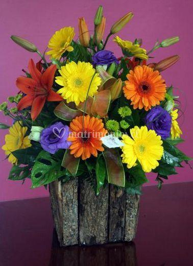 Hermosos colores de Girasoles Florería