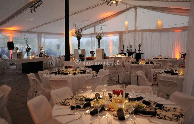 Sillas y mesas blancas