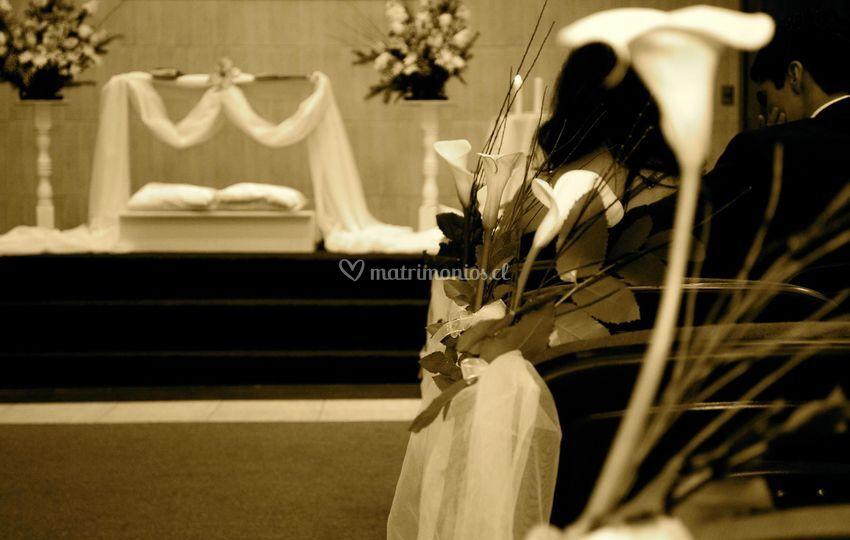 Registramos cada momento de su matrimonio