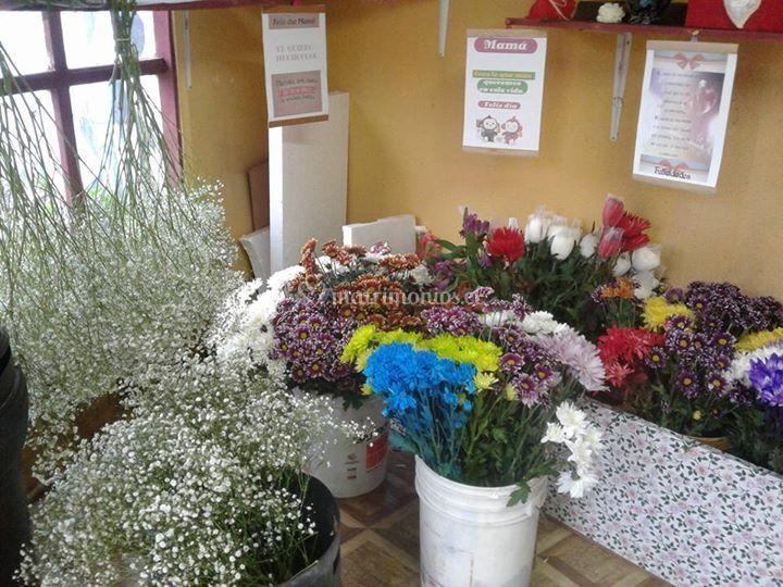 Flores frescas naturales