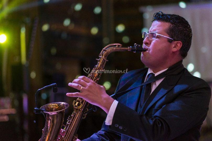 Exclusivo de Saxofonista Herbert