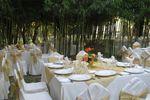Matrimono bosque de bamb� de Centro de Eventos Bauerland