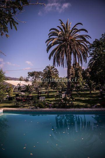 Hacienda Venus
