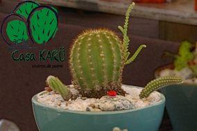 Casa Karü Cactus