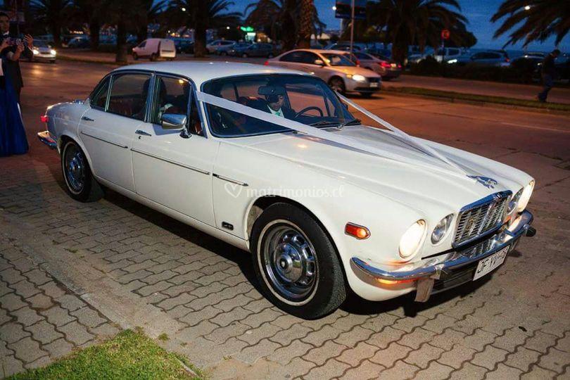 Jaguar xj12 5.3 V12