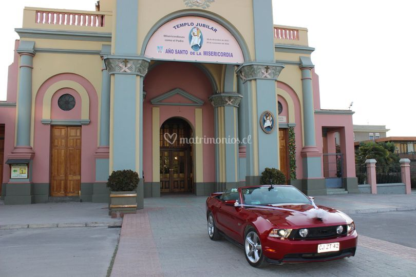 Novios Mustang