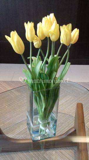 Tulipanes para civil