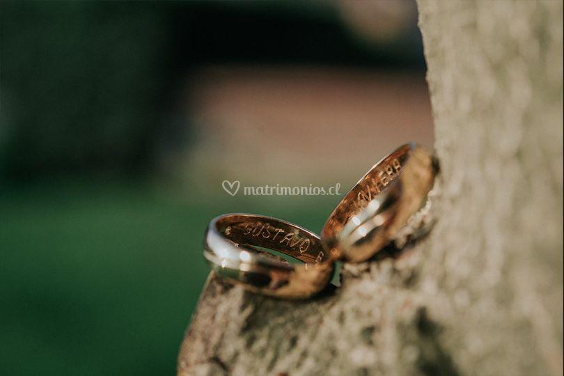 Detalle anillos primer plano