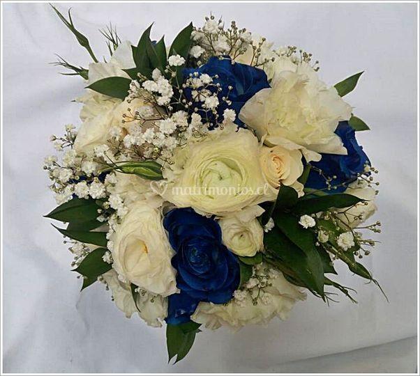 RN con Rosas azules