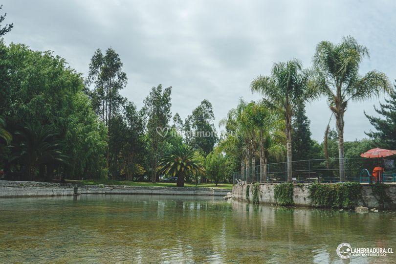 Laguna Artificial con piscina