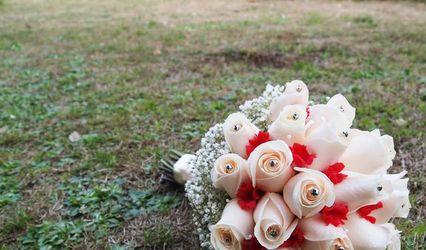 Flores y Piedras 1