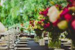 Gastronomía y decoración