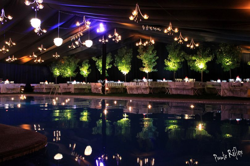 Sector piscina encarpado