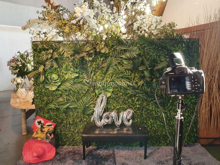 Jungle Fever+Salud a los Novio