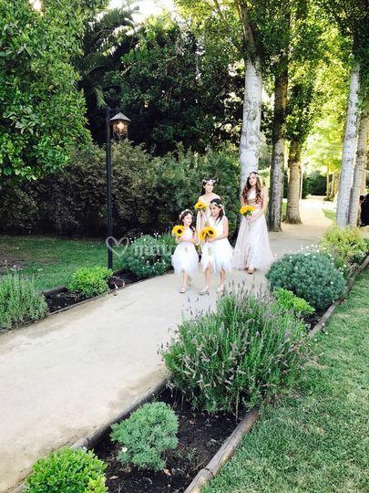 Entrada ceremonia novia