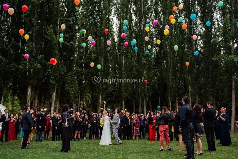 Jardines y globos