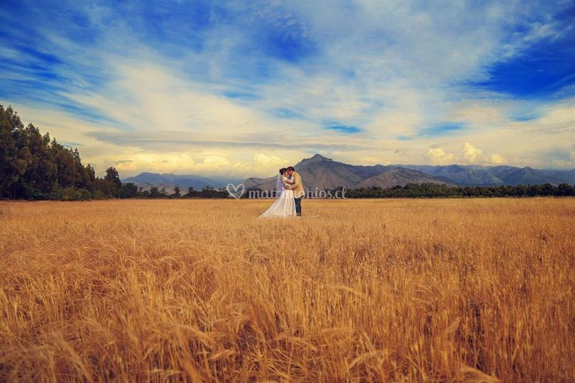 Fotografía tu Matrimonio