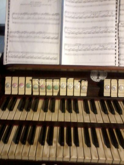 Manuales órgano de tubos