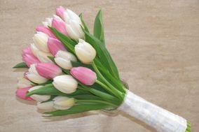 Eugenio Yaksic Diseño Floral