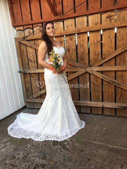 Para novias