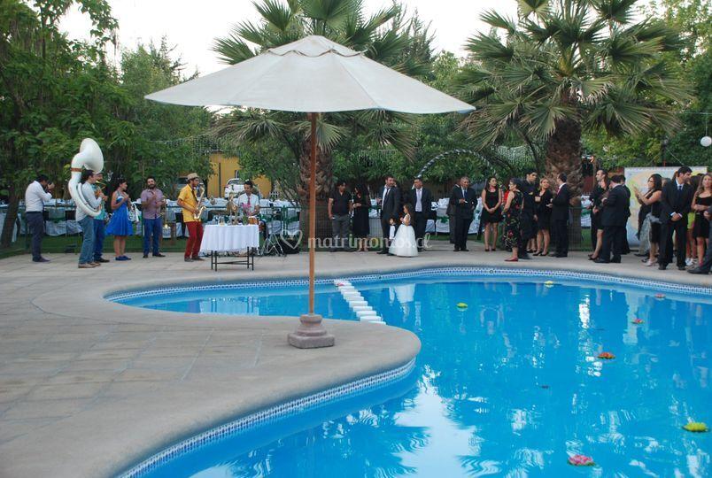 Cóctel terraza piscina