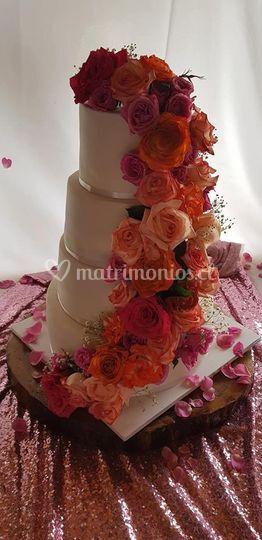 Torta rosas colores