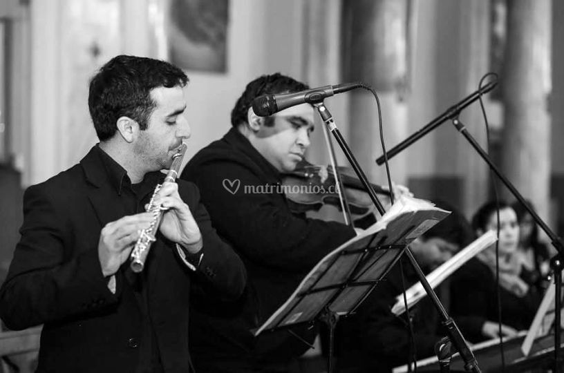 Músicos de Coro Mariano