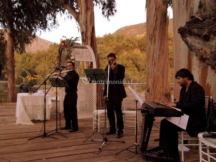 Músicos al aire libre