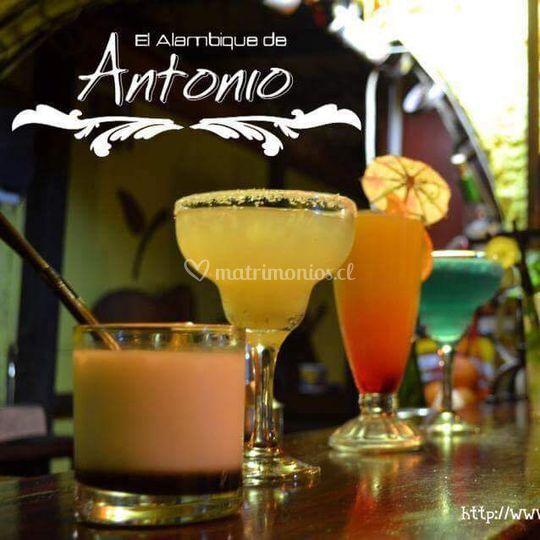 El Alambique de Antonio
