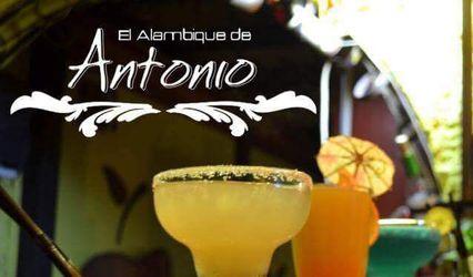 El Alambique de Antonio 1