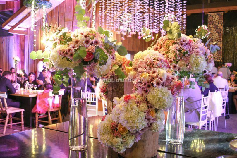 Pascal - Flores & Eventos