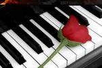 Rosa y piano