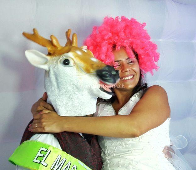 Matrimonio Robert y Pamela