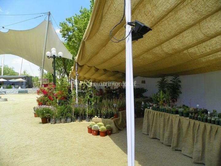 Feria Parque Bustamante
