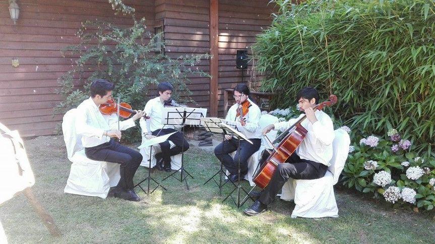 Música en vivo bodas