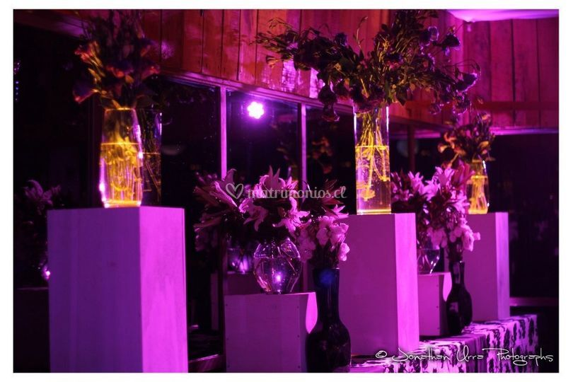 Buffet lisianthus y lilium