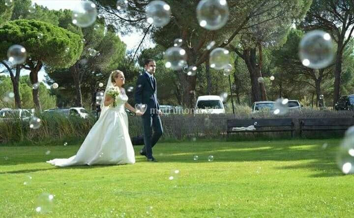 Novios & burbujas